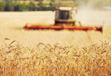 Rusza jesienna sprzedaż dotowanych ubezpieczeń dla rolników.