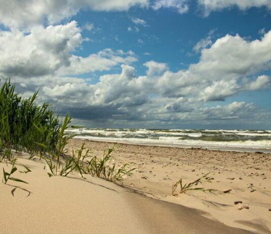 Gdynia apartamenty nad morzem – widok na plażę